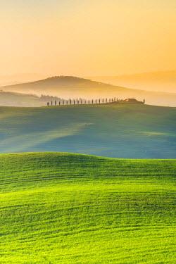 ITA5267AW Valdorcia, Siena, Tuscany, Italy. Rolling hills at sunrise.