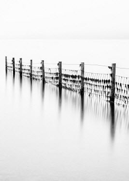ENG12845AW Remains of the old fence on Derwentwater, Cumbria, UK