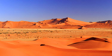 NB01112 Namibia, Namib Naukluft National Park, Sossussvlei Sand Dunes