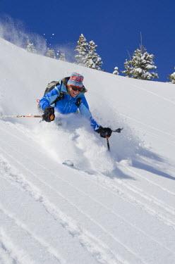 US45HGA0793 Skier enjoying deep powder, Wasatch Backcountry, Days Fork, Big Cottonwood Canyon, near Salt Lake City and Alta, Utah (MR)