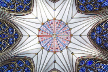 ENG13046AW England, York. Looking up at the roof and windows of the Chapter House in York Minster.