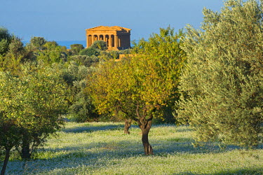 ITA5419AWRF Temple of Concordia, Valley of the Temples, Agrigento, Sicily, Italy