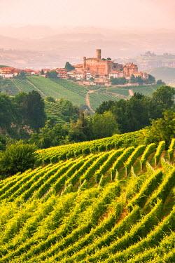 CLKLG27899 Italy, Piedmont, Cuneo district ,Langhe, Castiglione Falletto, the vineyards and the castle of Castiglione Falletto
