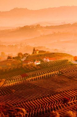 CLKLG27939 Italy, Piedmont, Cuneo District, Langhe - Autumnal Sunrise