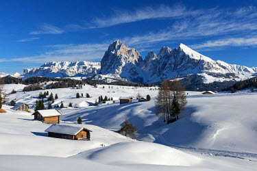 CLKMK33166 Alpe di Siusi/Seiser Alm, Dolomites, South Tyrol, Italy. Winter landscape on the Alpe di Siusi/Seiser Alm in the Dolomites. In the background the peaks of Sella, Sassolungo/Langkofel and Sassopiatto/P...
