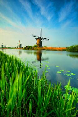 CLKWD33026 Kinderdijk, Netherlands . The windmills of Kinderdijk photographed at sunrise