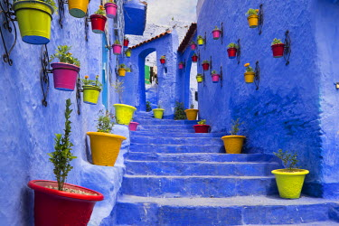 AF29EWI0243 Morocco, Chefchaouen or Chaouen is most noted for its small narrow streets and neighborhoods painted in variety of vivid blue colors. Plantings in colorful pots line the narrow corridors.