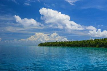 OC18MRU0054 Ant Atoll, Pohnpei, Micronesia