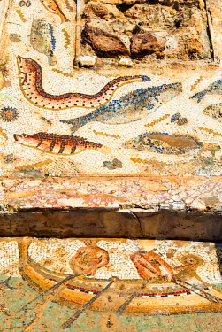 AF47NTO0043 Mosaic of fishermen and fish, Utica Punic and Roman archaeological site, Tunisia, North Africa