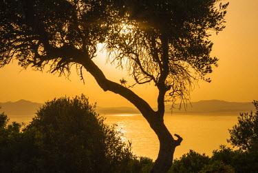 AF47NTO0079 Lake Ichkeul, National Park of Ichkeul, Bizerte Province, Tunisia, North Africa