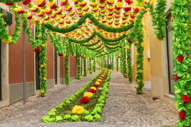 EU23EWI0347 Portugal, Santarem District. Trays Festival, an ancient religious festival, held every four years. Neighborhoods are colorfully decorated with paper flowers and garlands.