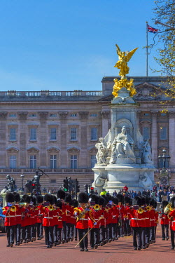 UK11012 UK, England, London, The Mall, Buckingham Palace, Changing of the Guard