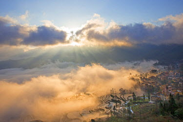 HMS1717795 China, Yunnan province, Yuanyang, Cultural Landscape of Honghe Hani Rice Terraces, listed as World Heritage by UNESCO, Duoyishu village, rice terraces, sunrise