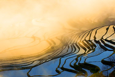 HMS1717832 China, Yunnan province, Yuanyang, Cultural Landscape of Honghe Hani Rice Terraces, listed as World Heritage by UNESCO, Duoyishu village, rice terraces, sunrise