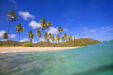 CLKRM46104 Underwater view of the sandy beach surrounded by palm trees Carlisle Morris Bay Antigua and Barbuda Leeward Island West Indies