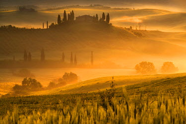 CLKMR43973 Europe, Italy, Belvedere farmhouse at dawn, province of Siena, Tuscany.