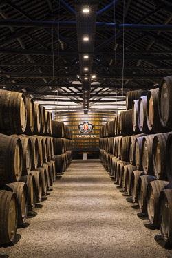 POR8915AW Portugal, Douro Litoral, Porto. Barrels in the wine cellar of Taylor's Port Lodge.