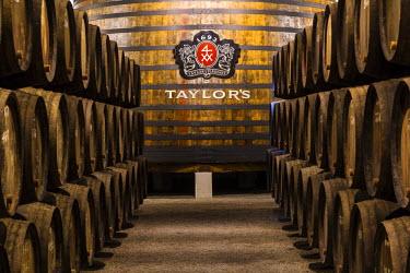 POR8916AW Portugal, Douro Litoral, Porto. Barrels in the wine cellar of Taylor's Port Lodge.