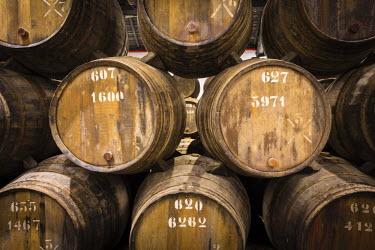 POR8919AW Portugal, Douro Litoral, Porto. Barrels in the wine cellar of Taylor's Port Lodge.