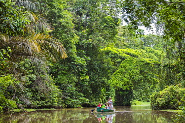CR33178 Costa Rica, Limon Province, Tortuguero. Visitors travel by boat on the extensive waterways of the Tortuguero National Park in search of the abundant wildlife for which the park is famous.