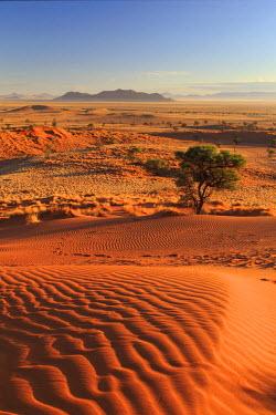 NB01122 Namibia, Namib Naukluft National Park