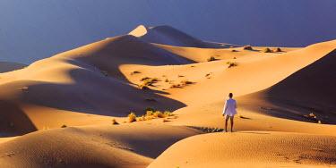 NB01125 Namibia, Namib Naukluft National Park, Sossussvlei Sand Dunes