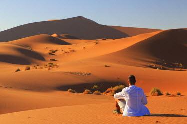 NB01126 Namibia, Namib Naukluft National Park, Sossussvlei Sand Dunes