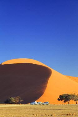 NB01131 Namibia, Namib Naukluft National Park, Sossussvlei Sand Dunes, Dune 45