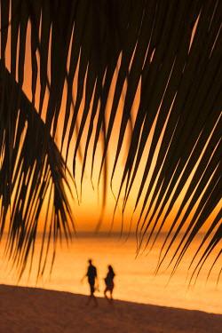 GN01028 Caribbean, Grenada, Grand Anse Bay, Grand Anse Beach