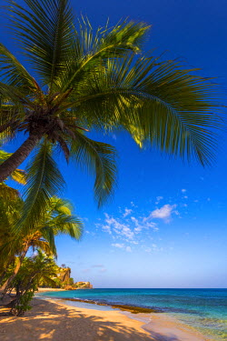 GN01043 Caribbean, Grenada, Magazine Beach