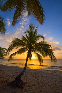 GN01044 Caribbean, Grenada, Magazine Beach
