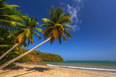 GN01057 Caribbean, Grenada, La Sagesse Bay, La Sagesse Beach