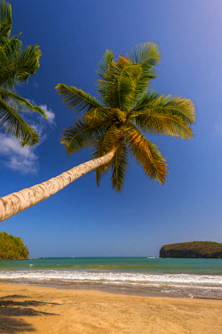 GN01058 Caribbean, Grenada, La Sagesse Bay, La Sagesse Beach