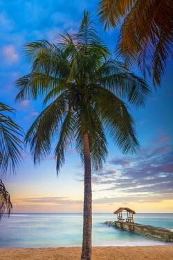 TT016RF Caribbean, Trinidad and Tobago, Tobago, Sandy Point