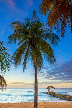 TT017RF Caribbean, Trinidad and Tobago, Tobago, Sandy Point