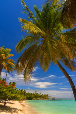 TT01048 Caribbean, Trinidad and Tobago, Tobago, Pigeon Point