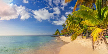 TT01053 Caribbean, Trinidad and Tobago, Tobago, Pigeon Point
