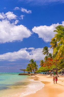 TT01054 Caribbean, Trinidad and Tobago, Tobago, Pigeon Point