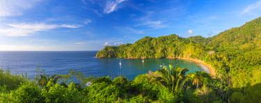 TT01061 Caribbean, Trinidad and Tobago, Tobago, Englishman's Bay, Englishman's Bay Beach