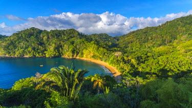 TT01062 Caribbean, Trinidad and Tobago, Tobago, Englishman's Bay, Englishman's Bay Beach