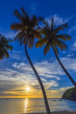TT023RF Caribbean, Trinidad and Tobago, Tobago, Castara Bay, Castara