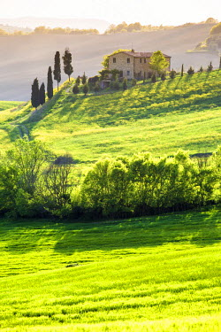 ITA8930AWRF Pienza, Val d'Orcia, Tuscany