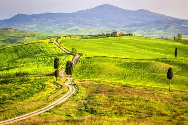 ITA8932AWRF Pienza, Val d'Orcia, Tuscany