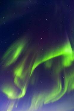 ICE3751 The Aurora Borealis (Northern Lights), Lake Kleifarvatn near Reykjavik