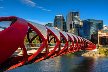 CAN2979AW Peace Bridge, Calgary, Alberta, Canada
