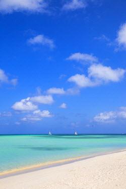 AA01108 Caribbean, Netherland Antilles, Aruba, Palm beach