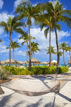 AA01109 Caribbean, Netherland Antilles, Aruba, Hammock on Palm beach