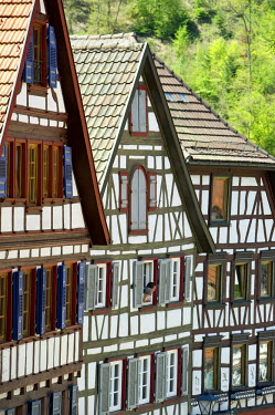 IBLDJS02250229 Half-timbered houses in Schiltach, Kinzigtal Valley, Black Forest, Baden-Wuerttemberg, Germany