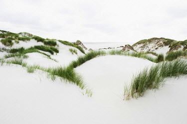 IBLDJS03031341 Dunes and a white sandy beach, Kniepsand, Amrum, Amrum, North Frisian Islands, Schleswig-Holstein, Germany