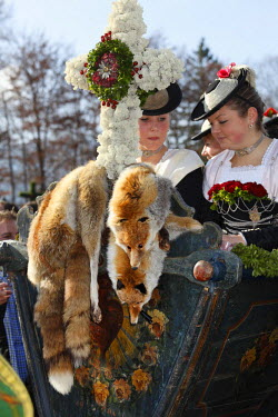 IBLMAN01809176 Women wearing traditional costume, fox furs, Leonhardi procession, Bad Toelz, Isarwinkel, Upper Bavaria, Bavaria, Germany